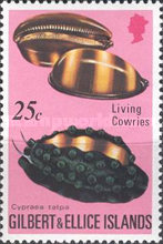 [Cowrie Shells, type GN]