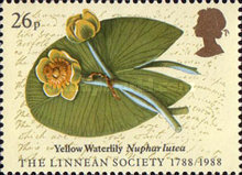[The 200th Anniversary of the Linnean Society of London, Typ AEE]