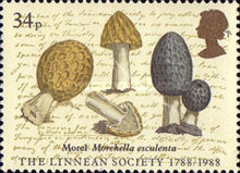 [The 200th Anniversary of the Linnean Society of London, Typ AEG]