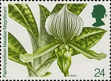 [The 14th World Orchid Conference, Typ AOB]