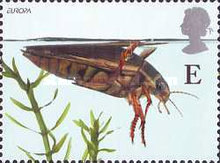 [EUROPA Stamps - Water, Treasure of Nature - Pond Life, Typ BFH]