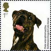 [The 150th Anniversary of the Battersea Dogs & Cats Home, Typ CIT]
