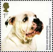 [The 150th Anniversary of the Battersea Dogs & Cats Home, Typ CIY]
