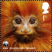 [Fauna - The 50th Anniversary of the WWF - World Wildlife Fund, Typ COC]