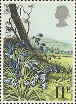 [British Wild Flowers, Typ SY]