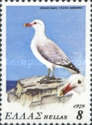[Protected Birds, type AIN]