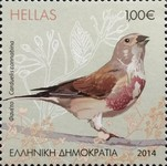 [Birds - Songbirds of the Greek Countryside, type CHV]