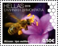 [World Bee Day, type CPT]