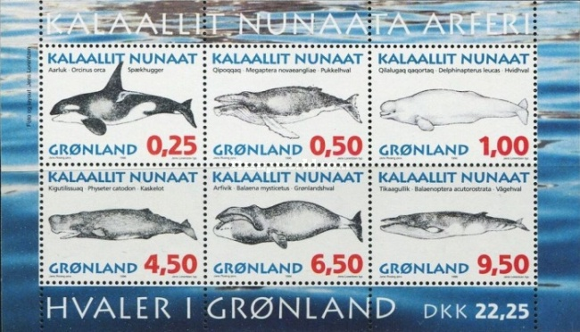 [Whales, type ]