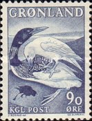 """[The Greenland Legend """"The Loon and the Raven"""", Typ AE]"""