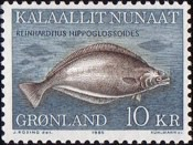 [Greenland Halibut, type CZ]