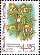 [Arctic Orchids, type HF]