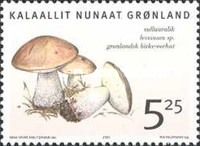 [Edible Mushrooms in Greenland, Typ MW]