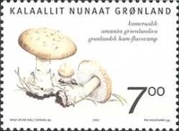 [Edible Mushrooms in Greenland, Typ MY]