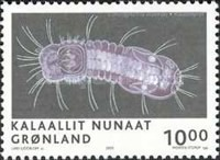 [Science in Greenland, Typ NB]