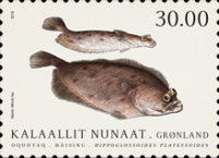 [Fish in Greenlandic Waters, Typ YV]