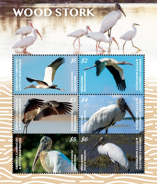 [Birds - Wood Stork, Typ ]