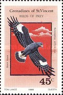[Birds of Prey, Typ QR]