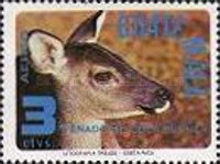 [Airmail - Wildlife Conservation, type ACV]