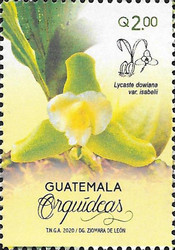 [Flowers - Orchids of Guatemala, type AWE]