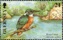 [EUROPA Stamps - Water, Treasure of Nature - Birds, Typ AGB]