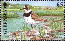 [EUROPA Stamps - Water, Treasure of Nature - Birds, Typ AGE]