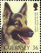 [The 100th Anniversary of the Guernsey Dog Society, Typ AGH]