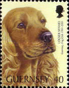 [The 100th Anniversary of the Guernsey Dog Society, Typ AGI]