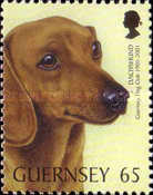 [The 100th Anniversary of the Guernsey Dog Society, Typ AGK]