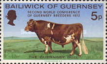 [World Conference of Guernsey Breeders, Typ AR]