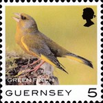 [Definitives - Guernsey Birds, type BQN]