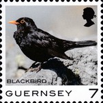 [Definitives - Guernsey Birds, type BQP]