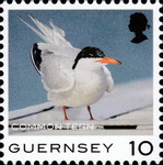 [Definitives - Guernsey Birds, type BQS]