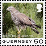 [Definitives - Guernsey Birds, type BQW]