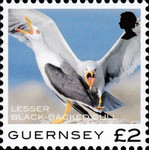 [Definitives - Guernsey Birds, type BQY]