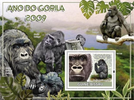[The Year of the Gorilla, Typ ]