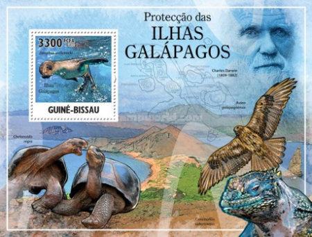 [Protection of Fauna - Galapagos Islands, Typ ]