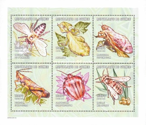 [Insects of the World, Typ ]