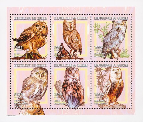 [Owls of the World, Typ ]