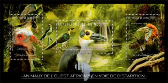 [Endangered Animals of West Africa - Birds, Typ ]