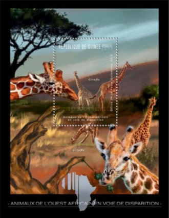 [Endangered Animals of West Africa - Giraffe, Typ ]