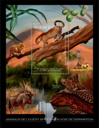 [Endangered Animals of West Africa - Leopards, Typ ]