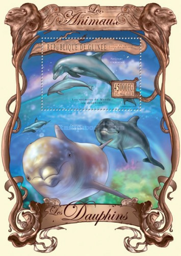[Animals - Dolphins, type ]