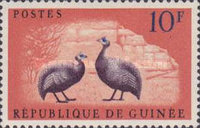 [Birds - Guineafowl, type AE1]