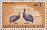 [Birds - Guineafowl, type AE3]
