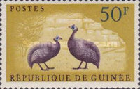 [Birds - Guineafowl, type AE4]