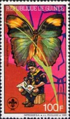 [Scouts, Birds and Butterflies, Typ AGD]