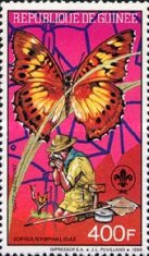 [Scouts, Birds and Butterflies, Typ AGG]