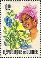 [Guinean Flora and Female Headdresses, Typ FI]
