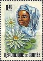 [Guinean Flora and Female Headdresses, Typ FL]